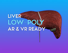 3D Liver w Gallbladder game-ready