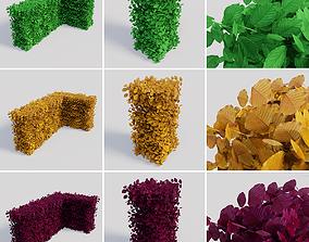 3D model Fagus sylvatica hedges