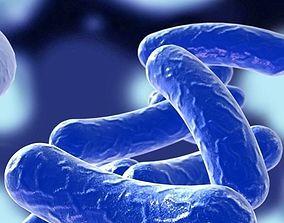 3D Bacillus 03