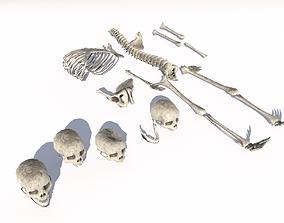 Old Bones Pack PBR 3D asset