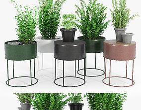 3D model Round Plant Box