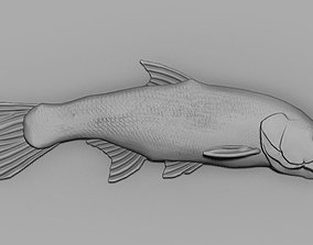 3D print model Jereh fish asp fish art