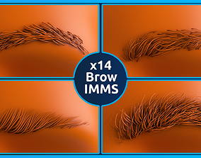 14 Zbrush Eyebrow IMMS 3D
