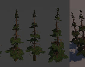3D asset Stylized Handpainted Pine Tree