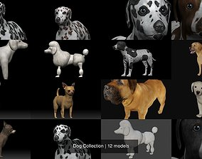 3D Dog Collection mastiff