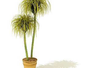 greenery 3D Potted Plant