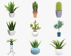 PBR Potted Plants Vol1 3D model decor