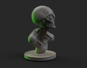 3D print model Grey Alien Bust