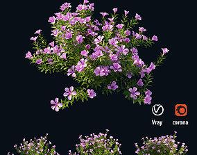 3D model Plant Flower set 01