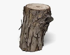 3D Wood Log - 8K Scan