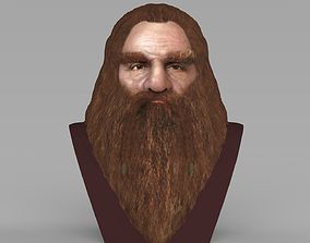 Gimli Lord of the Rings bust full color 3D printing