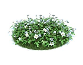 3D Flower Patch With White Flowers