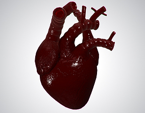 3D asset Heart Covered In Blood Rigged Animated