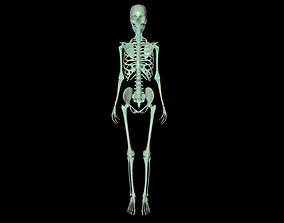 Skeleton 3D printable model medical