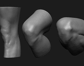 Knee Set Anatomy Reference 3D print model