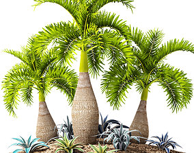 Palm collection 10 3D