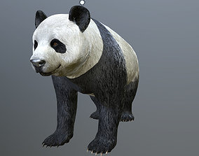 3D model Panda -Lowpoly