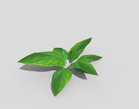 3D asset low-poly Low poly Plant