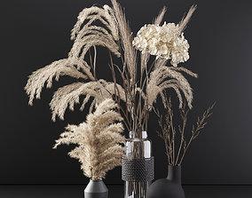 Set with dry plants 3D model