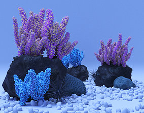 Coral reef animals 3D model
