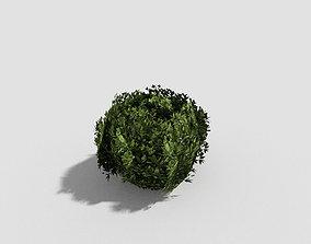 low poly tropical shrub 2 3D model