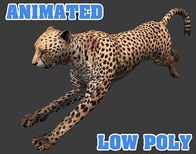 Cheetah 3D Model animated