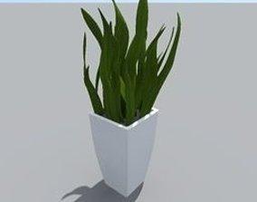 house plant 3D flower