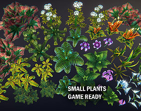 3D asset Small plants