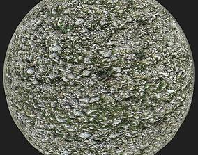3D model Rocky Forest Floor with Moss