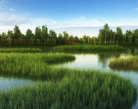 mountain 3D model River Stream water Wetland Reed