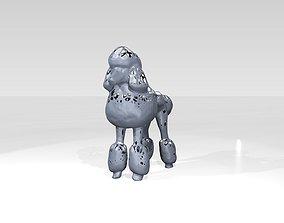 3D model Poodle Dust Voronoi