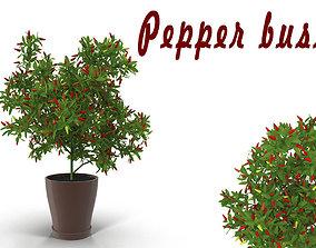Pepper bush 3D model