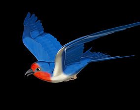 Rigged and animated cartoon swallow 3D model