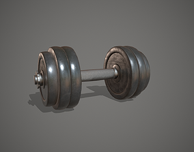 Dumbbell Iron Weight Gym Equipment 3D model