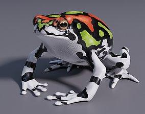 3D model Malagasy Rainbow Frog - Animated