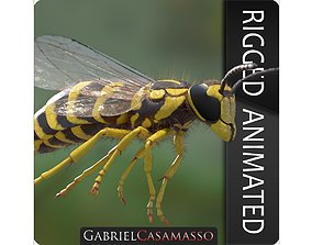 3D animated Yellow Jacket Wasp - Vespula Squamosa