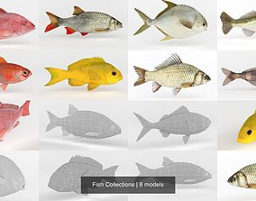 Fish Collections 3D