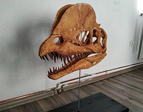 Dilophosaurus Skull 3D print model