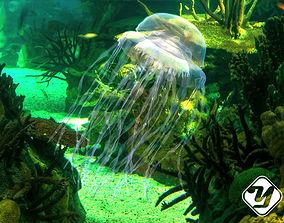 Jellyfish 3D asset
