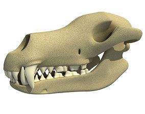 Wolf Fox Skull 3D