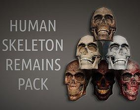 Lowpoly PBR Human Skeleton Remains Pack 3D asset