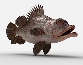3D model Scorpion fish Scorpen-2