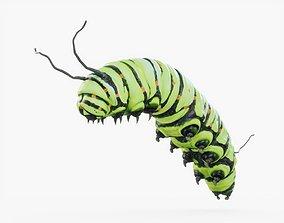 3D asset Caterpillar 02 Rigged