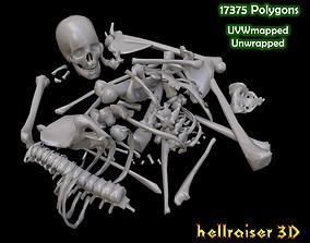 3D asset Dead Skeleton - 2