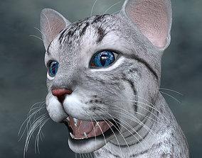 UVWC-021 Cat Textures Only 3D
