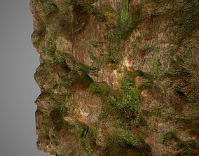 PBR seamless jungle rock textures 3D asset