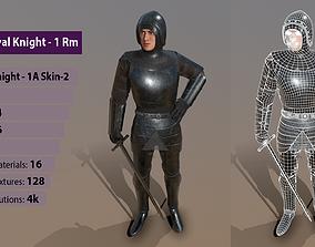 3D model TAB Medieval Knight - 1Rm A - Skin2