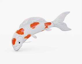 3D asset Koi Fish Rigged