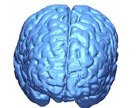 Human Brain 3D model from MRI DICOM - 3D Printing