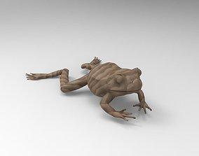 Frog 3D Printable